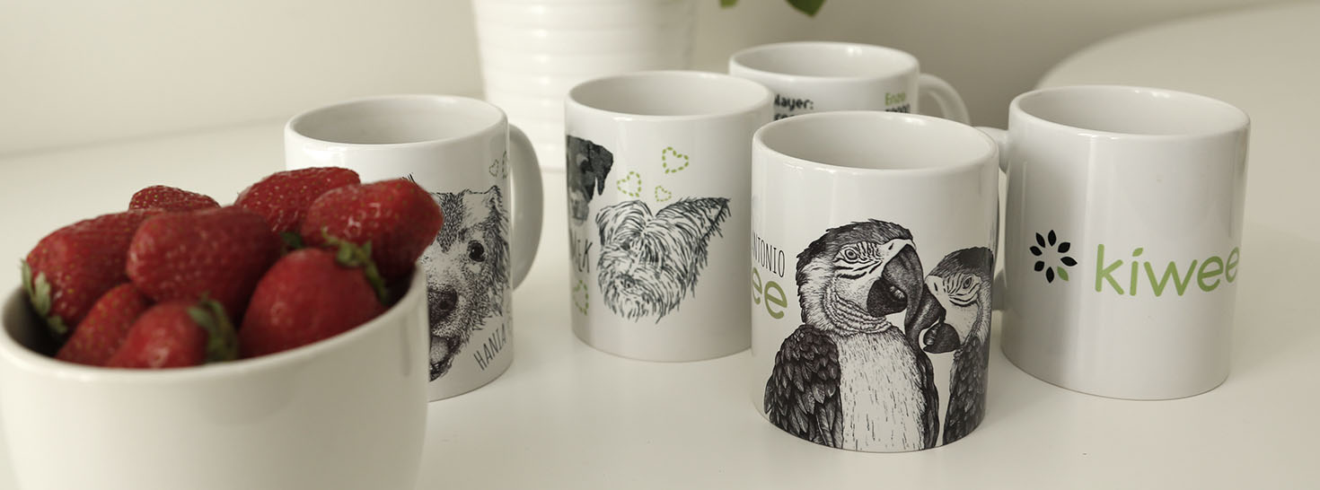 Kiwee mugs